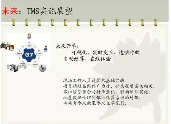 TMS实施展望